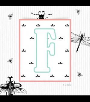 Design Nanda Freire